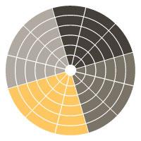 Neutral with a Pop colour Palette